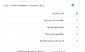 square-payments-options.png